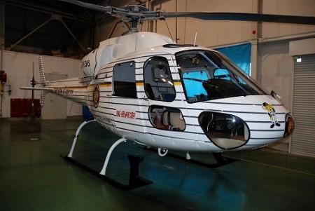 「阪神タイガースヘリコプター」。確かに目立つし、阪神ファンにとっては「夢のヘリ」に他ならないだろう。