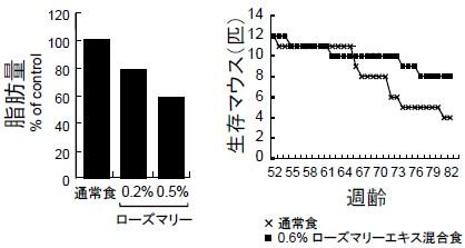 ローズマリーによるマウス実験結果データ