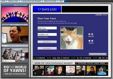 世界中から「あくびな顔」の投稿を受付中。早速当方も猫写真ライブラリからあくびな猫を探してアップロード。