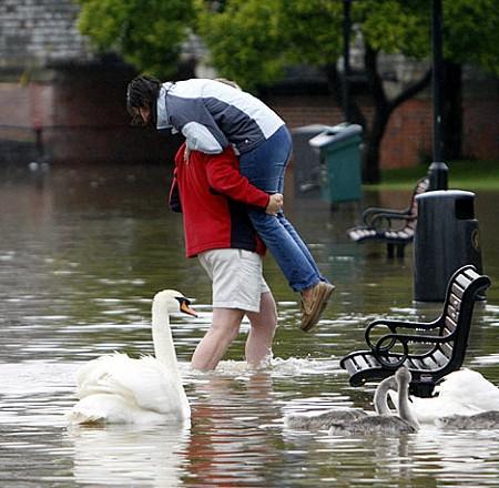 一枚だけ、ちょっとほっとする写真を引用。キャプションに曰く「こんな洪水の中では、鳥は人間より幸せそうに見えるよね」とのこと。なるほど……