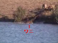 Battle at Krugerイメージ