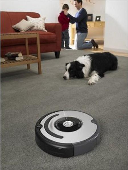 室内犬がいる家での利用シーン。