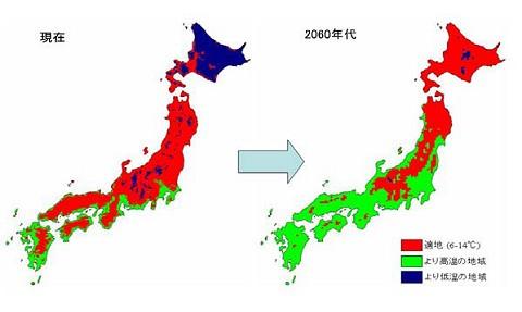 リンゴ栽培の適地の変化。北海道がほぼ全域に納まると共に、関東以南では「現状のままでは」ほぼ採れなくなるとの予想。