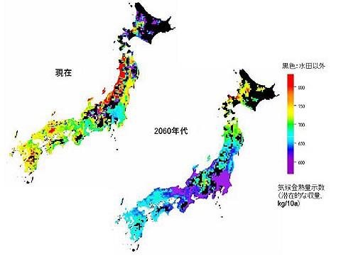 お米の潜在的収穫量の変化。北海道はともかく東北以南で押し並べて収穫予想量が減少しているのが、色の変化で分かる。
