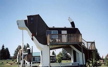 巨大な親子犬の宿泊施設