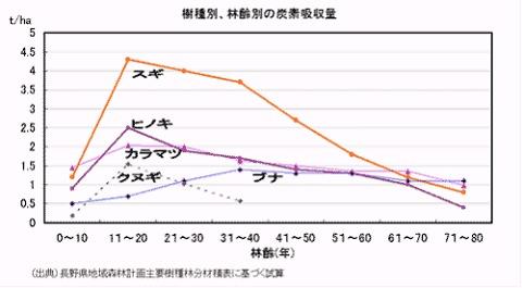 種類・林齢別炭素吸収量(林野庁データ)