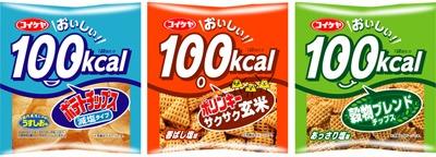 おいしい100kcal ポテトチップス減塩タイプ うすしお味