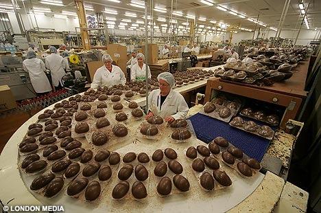 成型されたイースタのチョコレートを検品中。巨大なチョコボールのように見える。チョコレート好きには夢のような職場かもしれない(目の前にして食べられないから、ある意味地獄だろうが(笑))