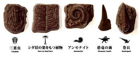 化石チョコレート5種類。個人的には三葉虫とアンモナイトが特にお気に入り