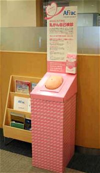 乳がん触診モデルイメージ