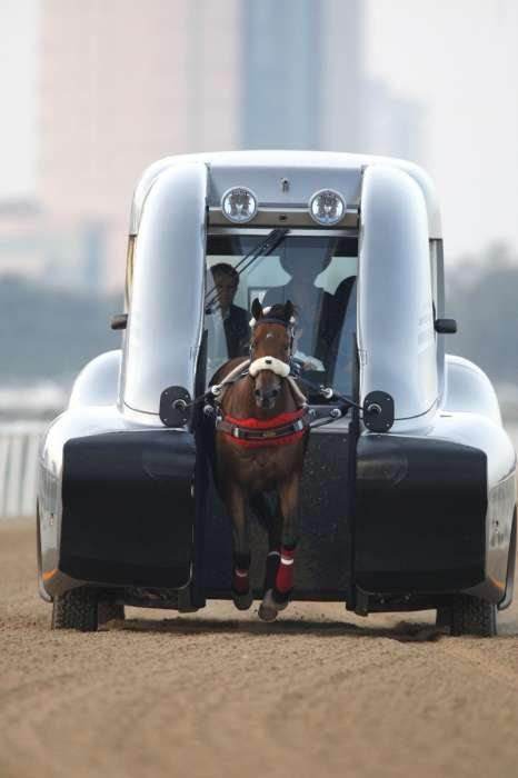 競馬場内のダートを走る「Horse Trainers」
