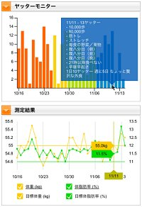 入力データのビジュアル化イメージ