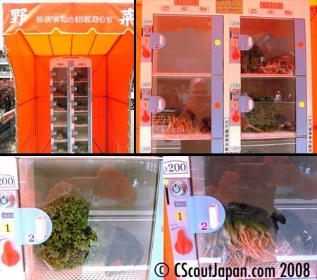 卵自動販売機と野菜自動販売機