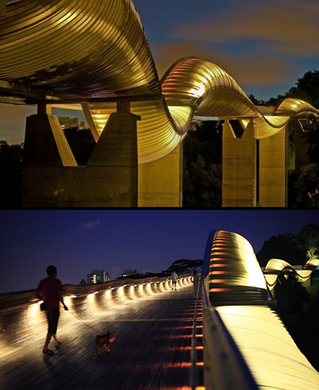 Henderson Waves Bridge。