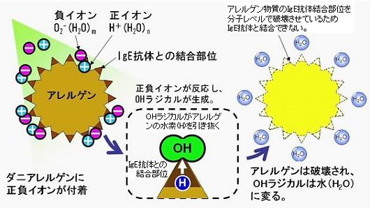 プラズマクラスターイオンのアレルギー分解・除去メカニズム