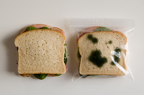 Anti-theft lunch Bag