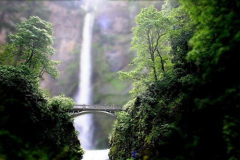 緑に囲まれた滝と橋