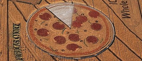 一言で表現すればミステリーサークルならぬ「ピザ・サークル」