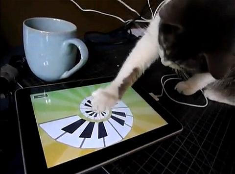 ↑ 続いて立ち上げたのは「マジックピアノ」。画面の動きだけでなく音も鳴るので猫の好奇心はフルスロットル