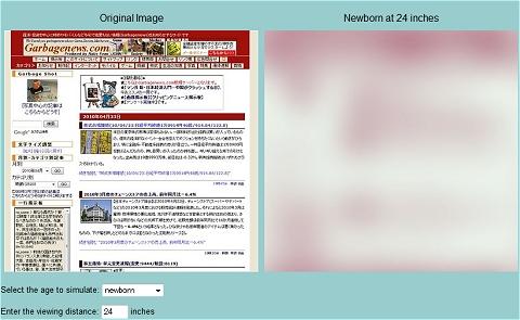 ↑ 当サイトトップページは生まれて間もない赤ちゃんにはこのように見えるわけだ