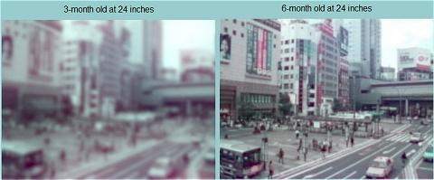 ↑ 実写も必要だろうということで、撮りだめしている写真から東京渋谷駅の駅前通りのものを選んで変換。上は元絵と生まれて間もない時期、下は3か月と6か月。
