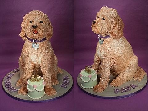 ↑ 父親の60歳の誕生日に作った、父が飼っている愛犬のケーキ