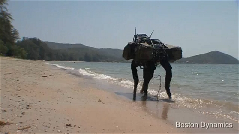 ↑ BigDog Beach'n。
