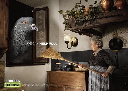 ↑ 窓から台所に侵入しようとする野鳩。お年寄りにとってはまさに怪物レベルな難儀さを覚える