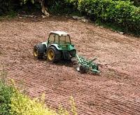 土壌づくり