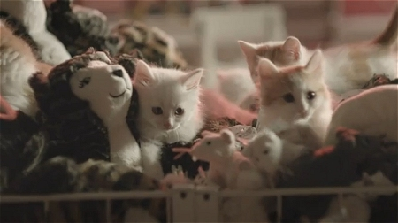↑ Happy Inside - IKEA cats advert。