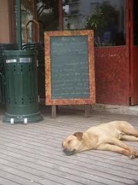 飲食店のメッセージボード