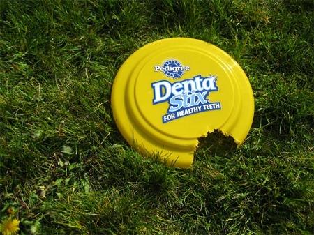 ↑ 愛犬用のフリスビー。そこにはかじられた跡と、「Dentastix」のロゴが
