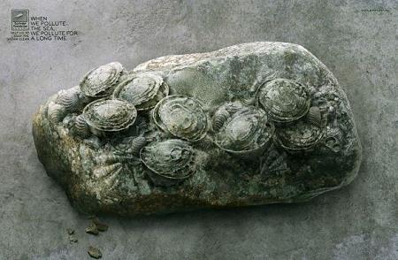 ↑ 缶の化石