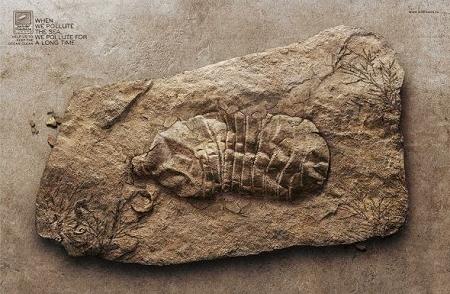 ↑ ペットボトルの化石