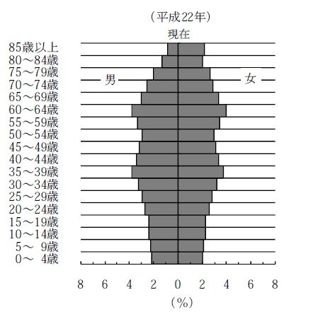 ↑ 国勢調査直近データ2010年における日本の人口ピラミッド(資料から抜粋)