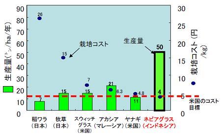 ↑ ネピアグラスと、比較対象となる他の植物との比較