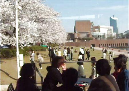↑ 公園内店舗の一つ、富山環水公園店で花見を楽しむ人達のようすを描いた投稿映像。