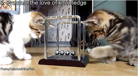↑ 8. Promote the love of knowledge