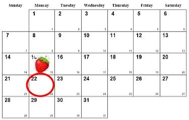 ↑ カレンダー上では15日(いちごの日)の下に22日がある