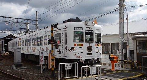 ↑ 「たま電車」のリニューアルを伝える報道映像。