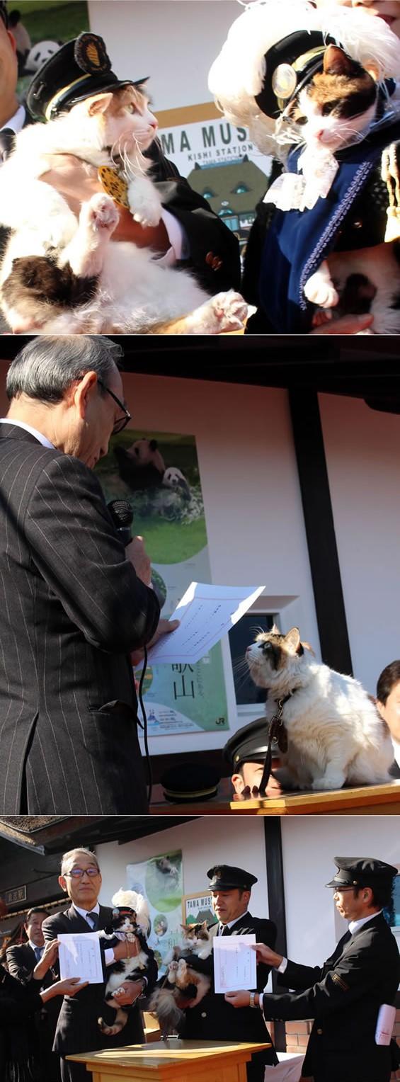 ↑ 貴志駅前で行われた記念式典の様子