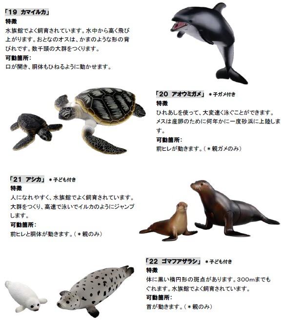 ↑ 水生生物をテーマにしたアニア新商品4種