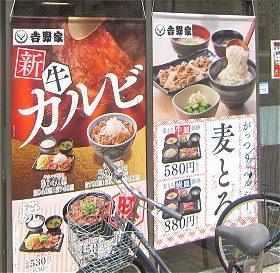 新 牛カルビ丼と麦とろ定食